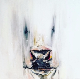 Cow___Fade_2